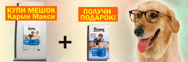 Подарок при покупке Karmy Maxi