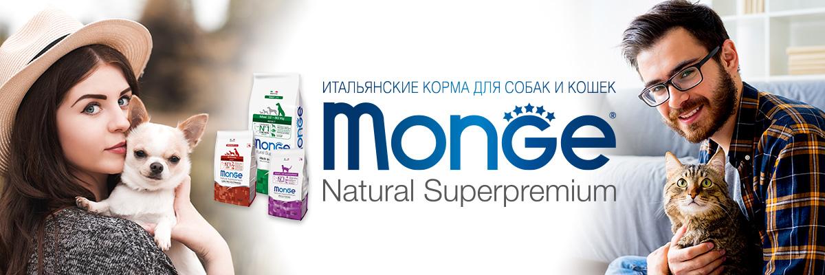 Banner monge