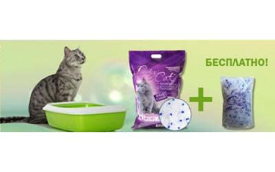 Подарок за покупку силикагелевого наполнителя Lucky Cat
